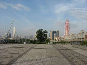 O'Connell,%20Chris_Odaiba